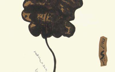 The Flower Snifter